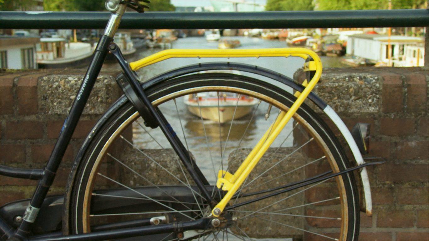 YellowBackie5